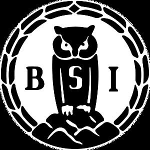 BSI Owl