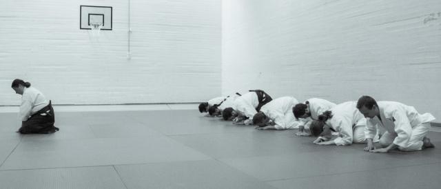 bsi-aikido-7970.jpg