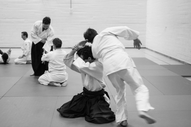 bsi-aikido-8230.jpg